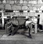 Adam Jahiel: The Couch, 1994