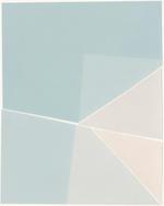 Amanda Marchand: Mountain Plover (Multitone Gloss FB), 2020