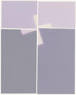 Amanda Marchand: Tall Bugbane II (Illford MG IV RC deluxe), 2020