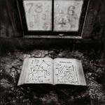 Carol Golemboski: Numerology, 2003