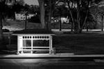 Charity Vargas: Letterman Bus Stop, 2007