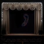 Cig Harvey: Dark Theater, 2014