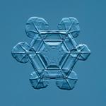 Douglas Levere: Snowflake 2015.02.25.007