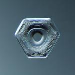 Douglas Levere: Snowflake 2014.02.09.010
