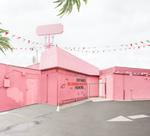 Fractured 2020: Leigh Merrill – Pink Corner, 2016