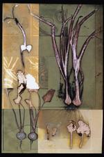 James Hajicek & Carol Panaro-Smith: Earth Vegetation Composite/04-28, 2004