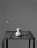James Pitts: Poppy Bud on Steel Table