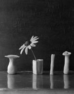 James Pitts: Tiny Daisy Four Sculpt Vases