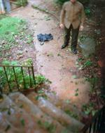 Joseph Mougel: Rain Rain