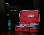 Justine Reyes: Still Life with Suitcase