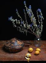 Justine Reyes: Still Life with Agelgel and Lemons