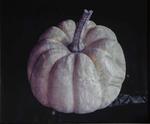 Kate Breakey: Pumpkin