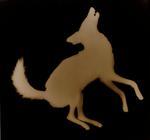 Kate Breakey: Coyote