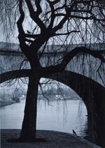 Kindred Spirits: Pentti Sammallahti – Paris, France, 2001