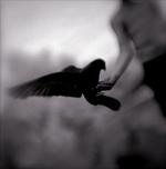 Kindred Spirits: Keith Carter – Open Hand, 2004