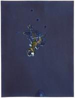 Light and Metal: Meghann Riepenhoff, For Anna, Vol II, Plate 33, 2017