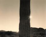 Mark Klett: Two suns