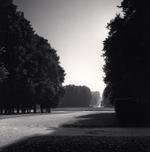 Michael Kenna: Morning Walk, Marly, France, 1996