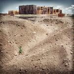 Michael Matsil: Occupied Territory, #9