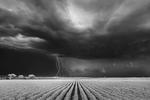 Mitch Dobrowner: Lightning/Cotton Field, 2021
