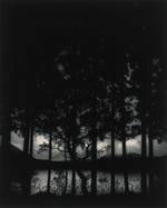 Pentti Sammallahti: Numazama Lake, Fukushima, Japan, 2005