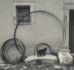 Pentti Sammallahti: Roscigno, Vecchia, Italy, 1999