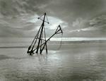 Peter Merts: Buried Shrimp Boat, 2003