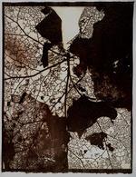 Susannah Hays: Map Detail, 1998