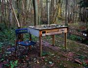 Susannah Hays: Nature's Writing Desk