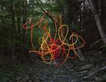 Thomas Jackson: Garden Hose no. 1, Accord, New York, 2013