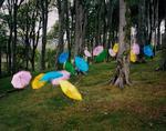Thomas Jackson: Umbrellas no. 1, Druidale, Isle of Man, 2018