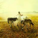 Tom Chambers: Middle Light