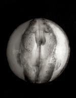 Zoë Zimmerman: Eclipse, 2006